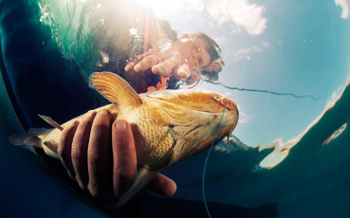 Риболовът е сред любимите занимания на много мъже