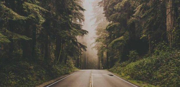 Оставете следа след себе си